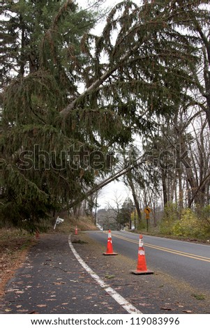 ANDOVER, NJ - OCT 30: Orange cones mark the spot where three trees lay across power lines over the road after Hurricane Sandy moved across the northeast in Andover, New Jersey on October 30, 2012. - stock photo