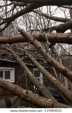 ANDOVER, NJ - OCT 30: Several trees lay across the roof of a home after Hurricane Sandy made landfall in the northeast region of the US in Andover, New Jersey on October 30, 2012. - stock photo