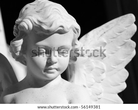 angel - stock photo