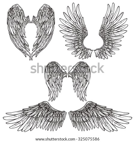 Angel or bird wings abstract sketch set isolated  illustration - stock photo