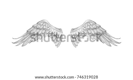 Angel wings drawing pencil
