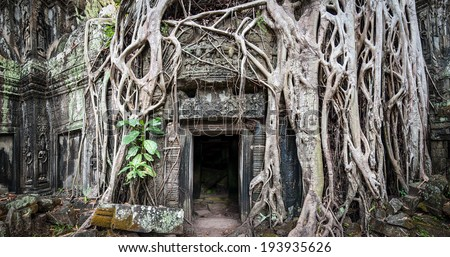 Angkor Wat Cambodia. Ta Prom Khmer ancient Buddhist temple in jungle forest. Famous landmark, place of worship and popular tourist travel destination in Asia. - stock photo