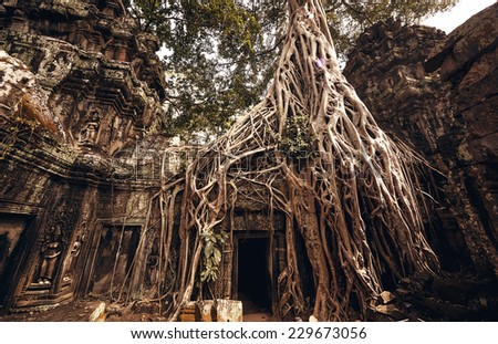 Angkor Wat Temple in Siem Reap, Cambodia - stock photo
