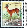 "ANGOLA - CIRCA 1953: A stamp printed in Angola from the ""Angolan fauna"" issue shows an Impala, circa 1953. - stock photo"
