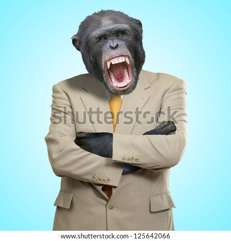Angry Gorilla In Suit On Blue Background - stock photo