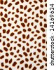 Animal background - leopard pattern texture - - stock photo