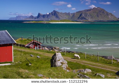 Animal farm with sod roof on Lofoten islands in Norway - stock photo
