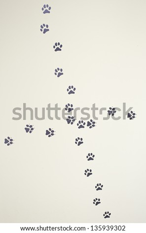 Animal footprints painted on the wall with space for text, pets and animals - stock photo