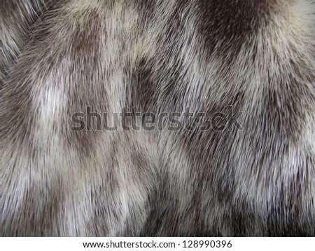 Animal fur. Use for texture or background. Genuine animal fur texture for fashion industry - stock photo
