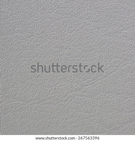 Animal skin texture or background. - stock photo