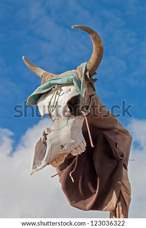 Animal Skull Against Blue Sky - stock photo