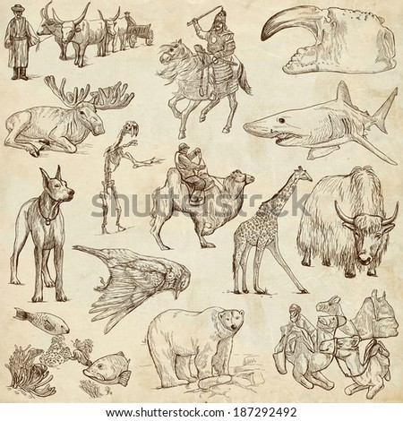 Animals around the world (collection no.8, old paper ) - Collection of an hand drawn illustrations. Description: Full sized hand drawn illustrations drawing on old paper. - stock photo