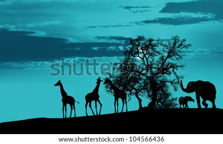Animals in Africa at sunset silhouette - stock photo