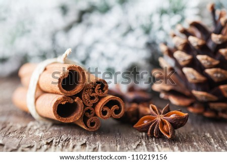 anise and cinnamon for christmas - stock photo