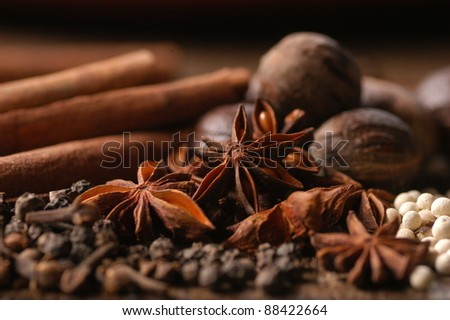 Aniseed Spices with other spices - stock photo