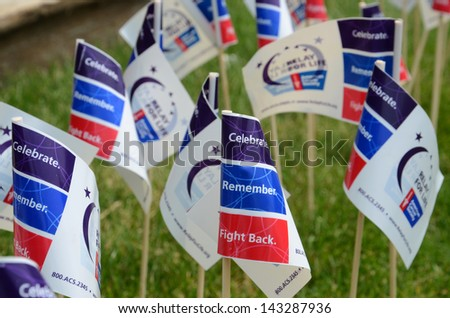 ANN ARBOR, MI - JUNE 22: Flags on display at the Relay for Life of Ann Arbor event on June 22, 2013 in Ann Arbor, MI. - stock photo