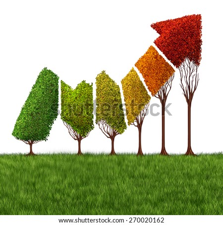 Annual financial report concept and market maturity symbol as a group of trees shaped as a profitable stock market arrow graph arrow changing seasons and leaf colors as a financial or business icon. - stock photo