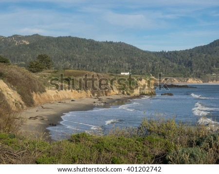 Ano Nuevo State Park is a state park of California, USA, encompassing Ano Nuevo Island and Ano Nuevo Point, which are known for their pinniped rookeries. - stock photo