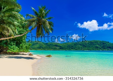 Anse a La Mouche - Paradise beach in Seychelles, Mahé - stock photo