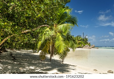Anse Union beach located in  plantation  L�¢??Union Estate in the west of La Digue island,  Seychelles - stock photo