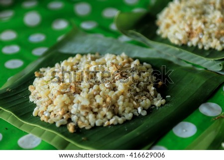 Ant eggs, eggs,insects, animals, nature. - stock photo