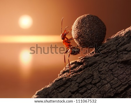 ant Sisyphus rolls stone uphill on mountain, concept - stock photo