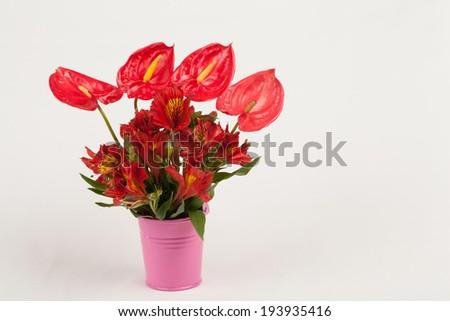 anthurium and alstroemerias flower - stock photo