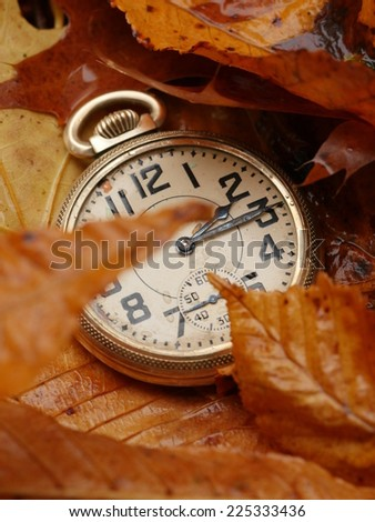 Antique pocket watch on Fall leaves