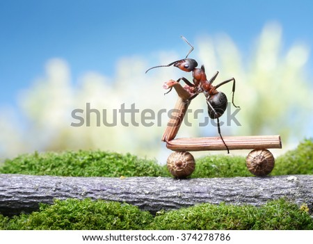 ants bike - stock photo