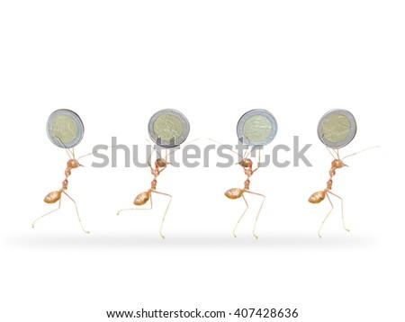 ants holding money - stock photo