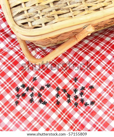 ants invade a picnic - stock photo