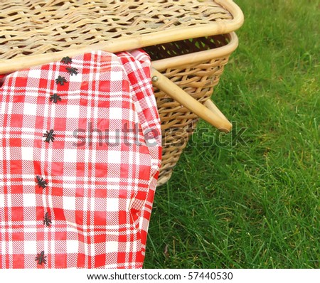 ants invade a picnic basket - stock photo