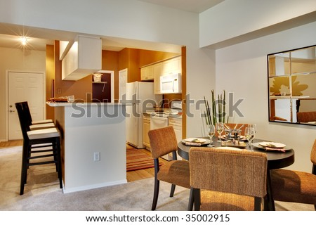 Apartment dining area with kitchen and dining table in view.