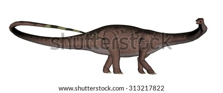 Apatosaurus dinosaur running isolated in white background - 3D render - stock photo