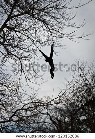 Ape swinging in a tree - stock photo