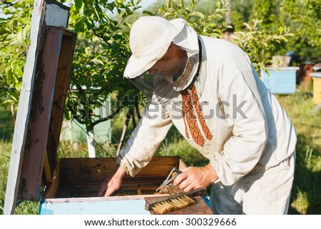 Apiarist wearing in a protective hat with equipment does inspection of his beehive, waist up