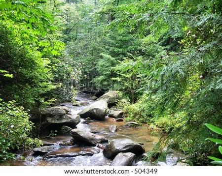 Appalachia Stream - stock photo