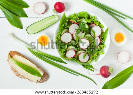 Appetizer spring organic salad with radish, green salad, cucumber, onion and wild leek on white background - stock photo