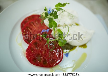 appetizer with tomato and cheese