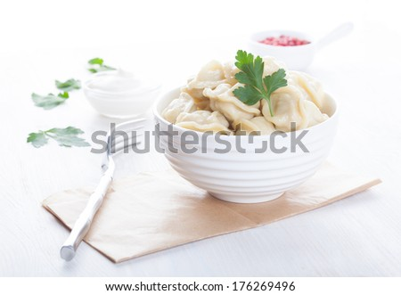 appetizing pelmeni in a beautiful white drinking bowl with sauce and spices - stock photo