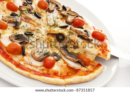 Appetizing pizza on a white plate - stock photo