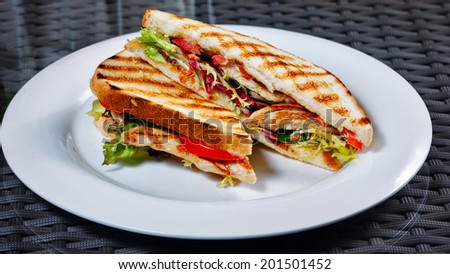 Appetizing sandwich with chicken and vegetables on a white plate for breakfast at a cafe - stock photo
