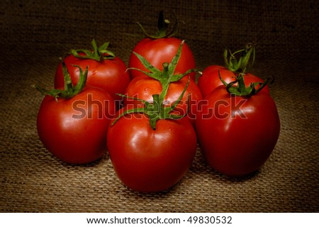 Appetizing tomatoes light-painted still life
