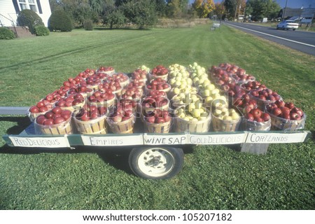 Apple baskets sitting on a trailer by the roadside in Clermont, NY