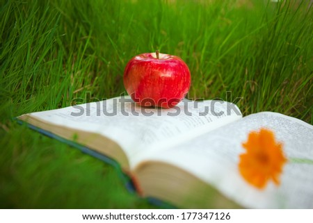 apple on the book - stock photo