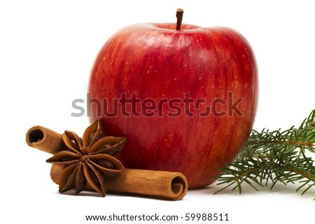 apple star anise cinnamon sticks and a branch on white background - stock photo