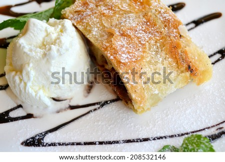 Apple strudel with ice cream and mint - stock photo
