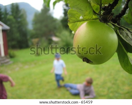 Apple tree- children playing. - stock photo