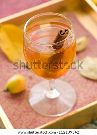 Apple wine or cider with cinnamon stick, selective focus - stock photo
