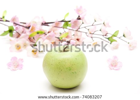 Apple with flowering branch